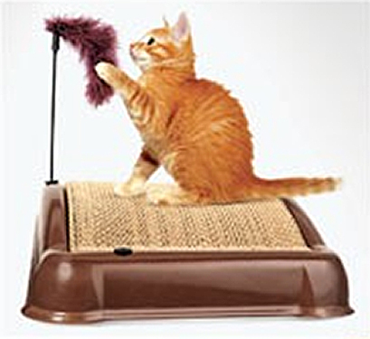 Emery Cat